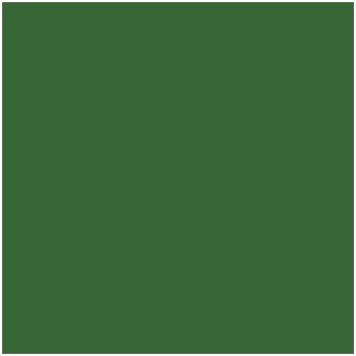 FFEXX Farben – RAL 6001